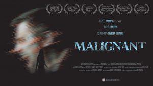 Malignant OTT Digital Rights
